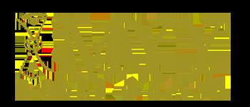 IMYY Tarot Coach Logo